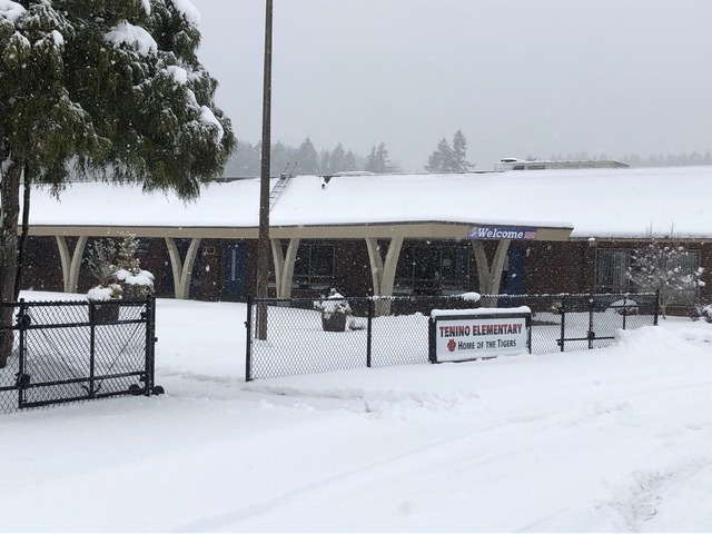 Snow at TES, Feb 10 2019